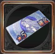 ★5装備品10連召喚チケット